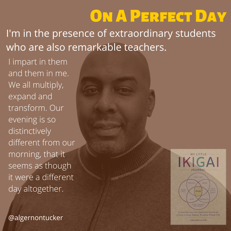 Get To Know Algernon – The Perfect Day [IKIGAI]
